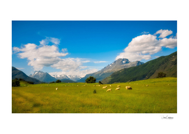 Almost typical New Zealand landscape