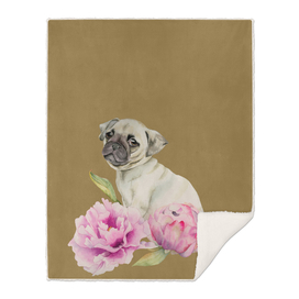 Pug and Peonies   Watercolor Illustration