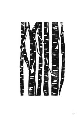 Woodcut Birches Black