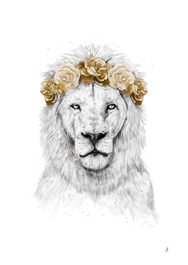 Festival lion (color version)