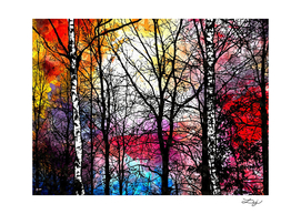 Tree Alley Colors