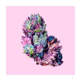 Fluffy V.1 rose