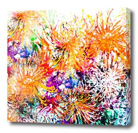 Sunny Chrysanthemums