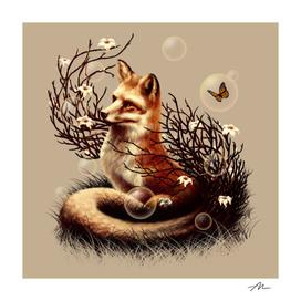 The Fox Tale