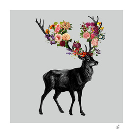 Spring Itself Deer Floral