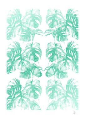 Monstera Tropical Jungle