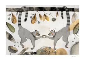 Lemurs In Love