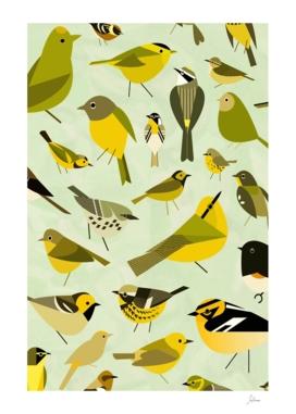 warbler window yellow