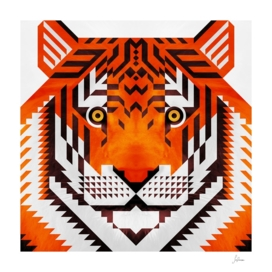 triangle tiger 2