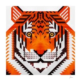triangle tiger 2