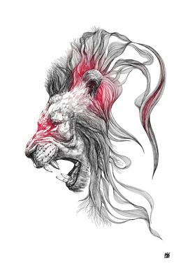 Lion v.01