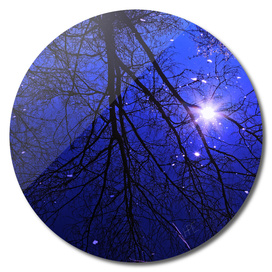 Dark Blue River