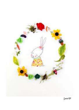 Zinnie the Rabbit