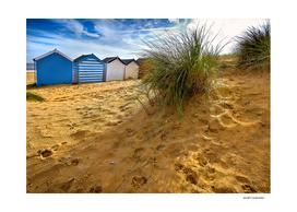 Behind The Beach Huts