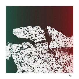 Leopard-Land