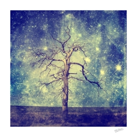 Old Tree and Starry Night