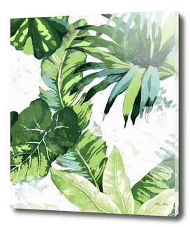Tropical Leaf Print
