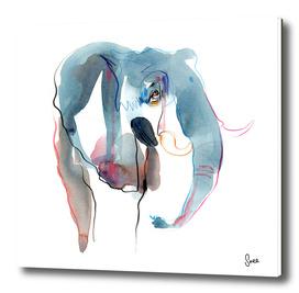 ELEPHANT II - Freefall Series