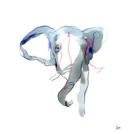 ELEPHANT I - Freefall Series