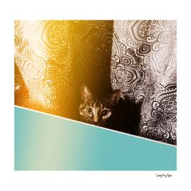 Cat Stare - Turquoise