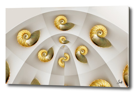 Shell Game #8