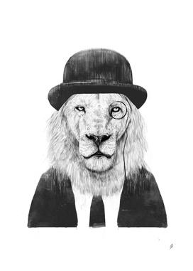 Sir Lion