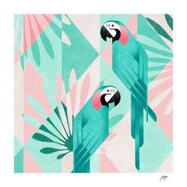 Macaw_HD