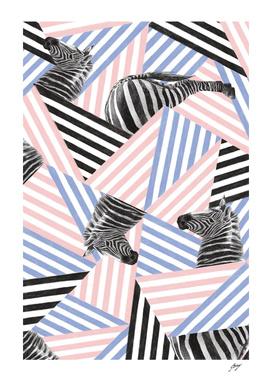 Zebra_Stripes (1)