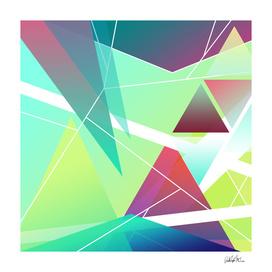Geometric Theory