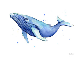 Humpback Whale Watercolor