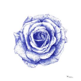 Ballpoint Blue Rose