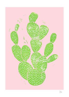 Cacti Minty Pinky