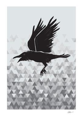 Traveller Crow