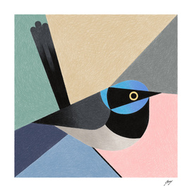Blue_headed_Bird