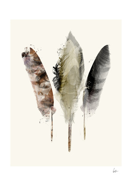 feathers earth