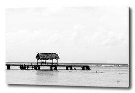 Pigeon Point, Tobago