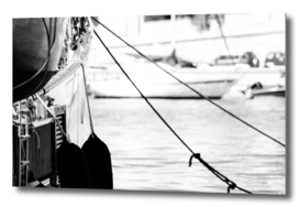 View_behind_the_ropes