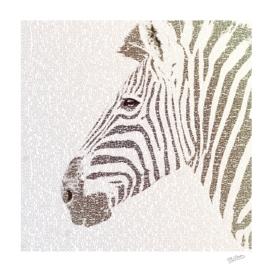 The Intellectual Zebra
