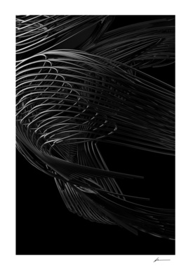 Linear Morphologies 006V