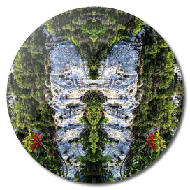Sleeping-Giant-forest