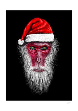 Santa Monkey