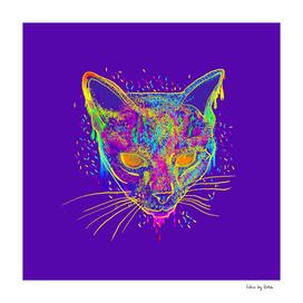 candy cat purple