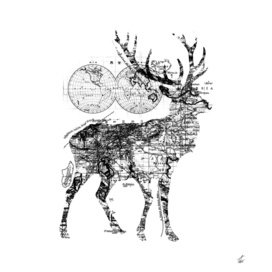 Deer Wanderlust Black and White