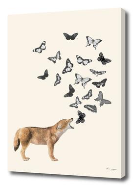 Screaming fox