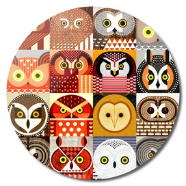 North American Owls