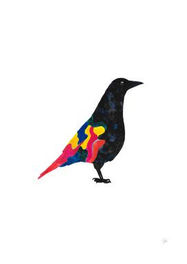 The Fashionista Crow