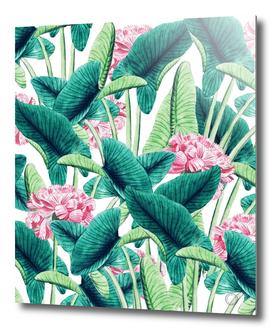 Lovely Botanical