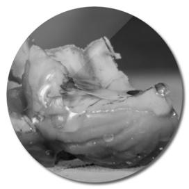 Chestnut in honey