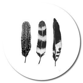 Dark Feather