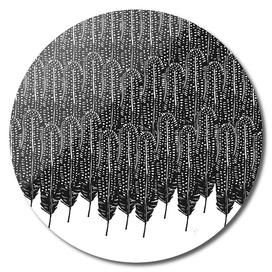 Black & White Feather Wilderness